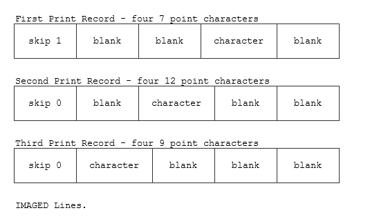 image about To Test Whether a Character is a Printable Character, Use This Function. called Printer Options